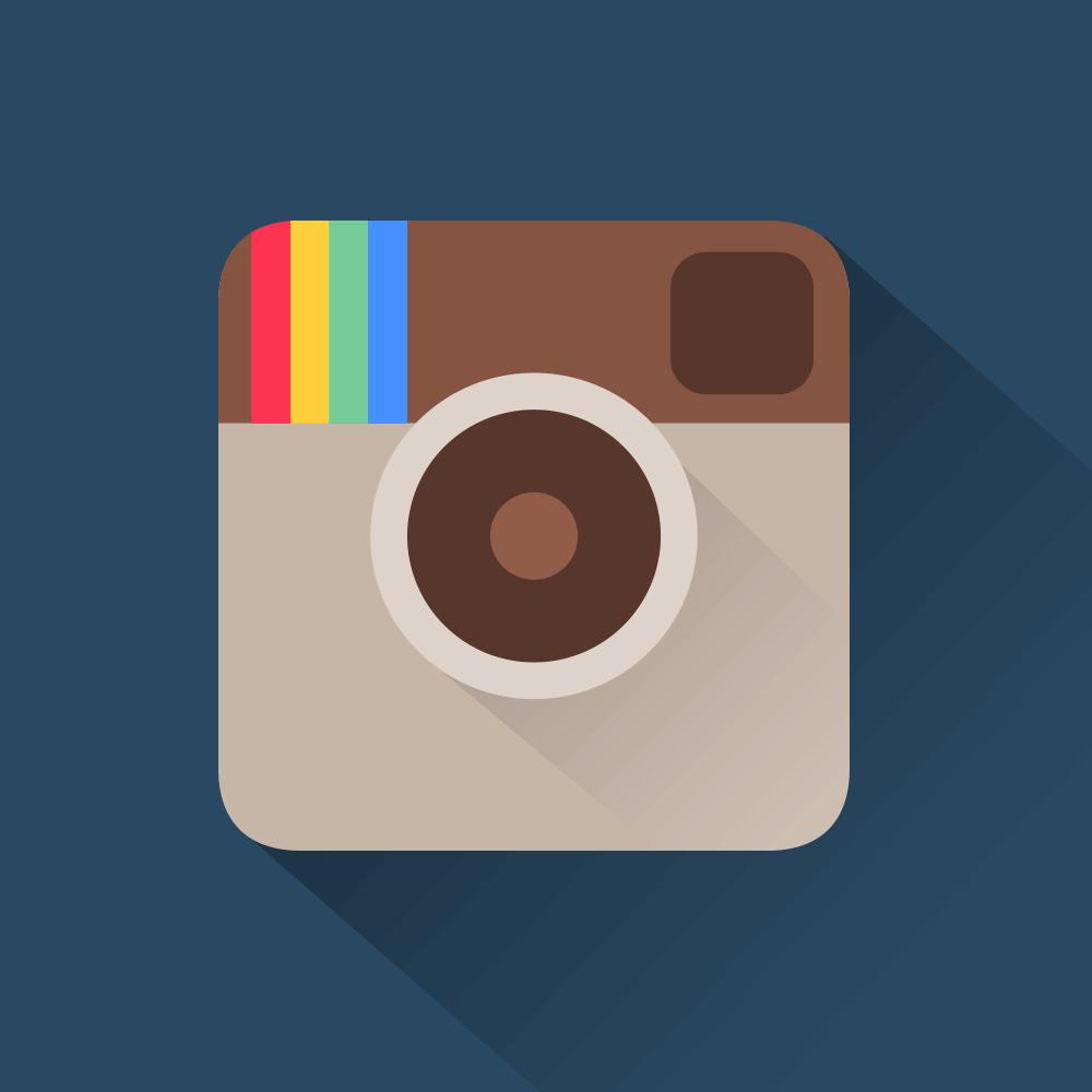 panel followers instagram