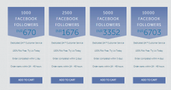 facebook followers packages