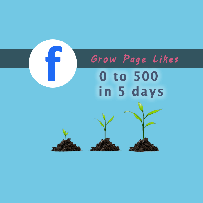 Grow-Facebook-Page-Likes