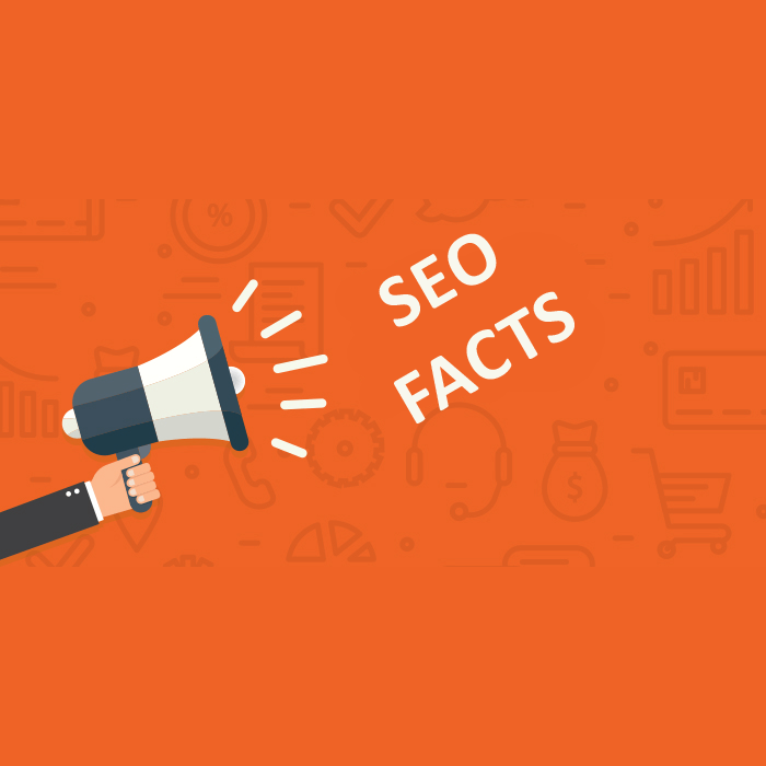 SEO facts for businesses in 2019